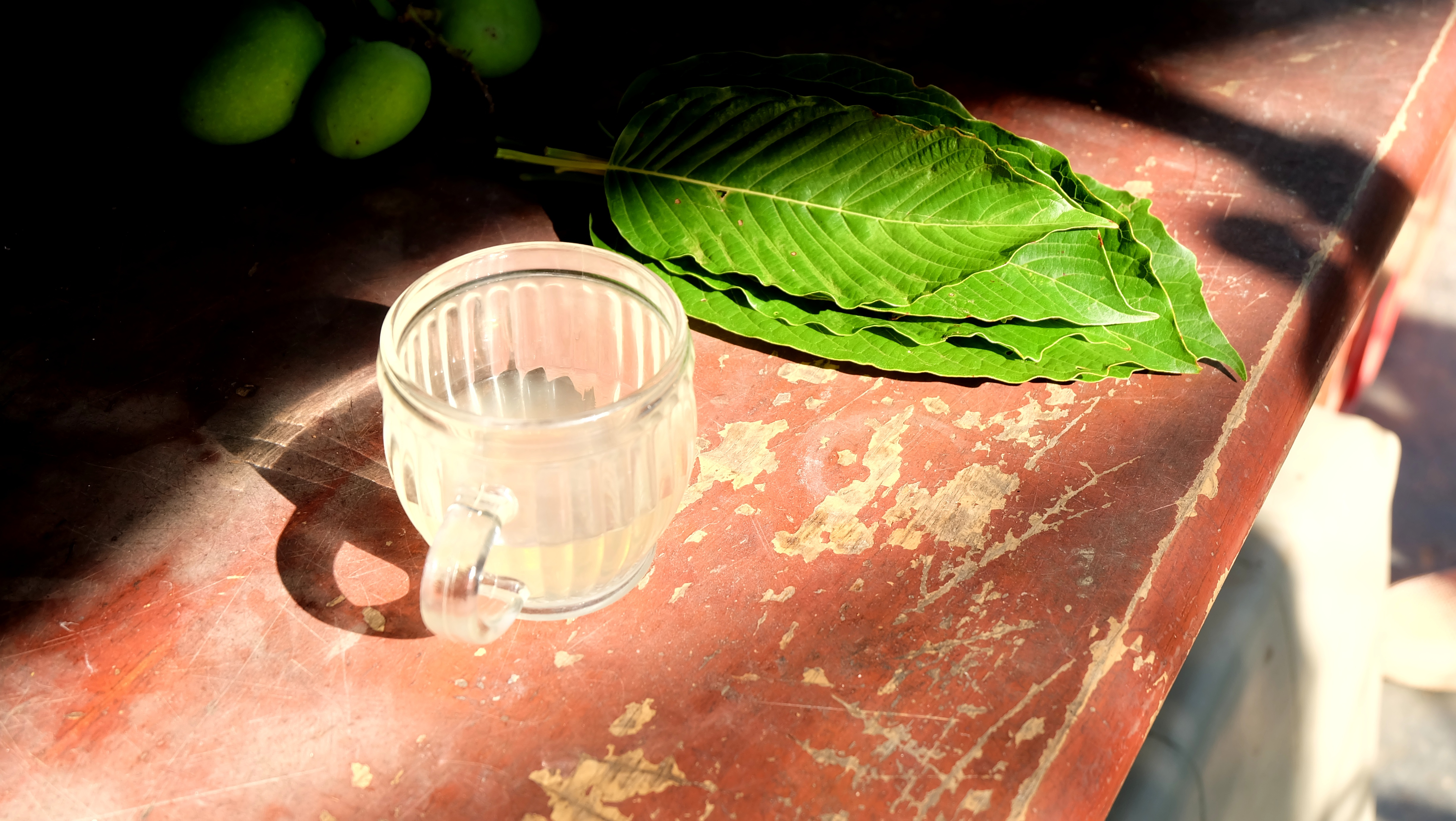 Does Kratom Tea Help With Anxiety, Pain, and Opiate Withdrawal?