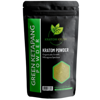 Green Ketapang Powder