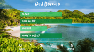 Red Borneo anxiety