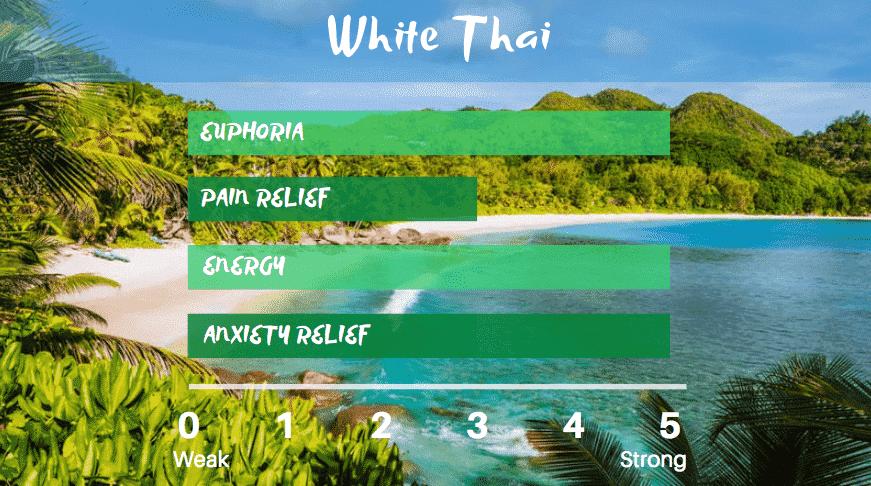 white-thai-kratom